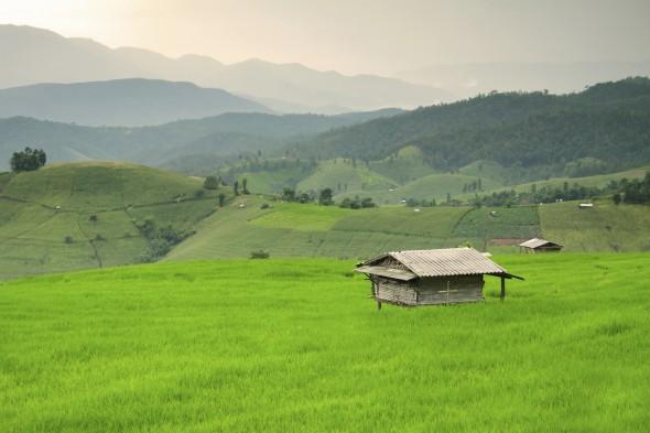 rural area thailand